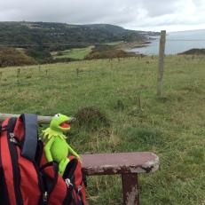 Kermit and rucksack