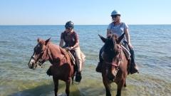 Riding 18